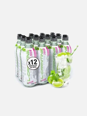 boisson-l-carnitine-bouteille-500ml-br-saveur-mojito-br-2000mg-eric-favre-laboratoire-mojito-x12
